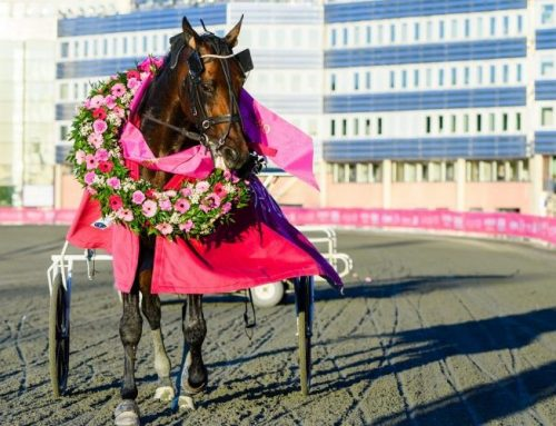 Propulsion vann Elitloppet